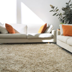Supplier Of Carpets Amp Floor Coverings In Perth Trevors