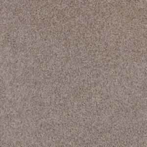 Category Carpets Trevors Carpets