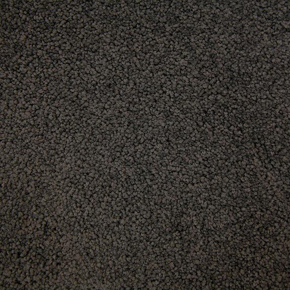 Pluto Trevors Carpets