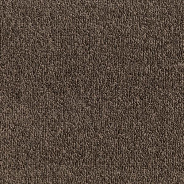 Compass Trevors Carpets