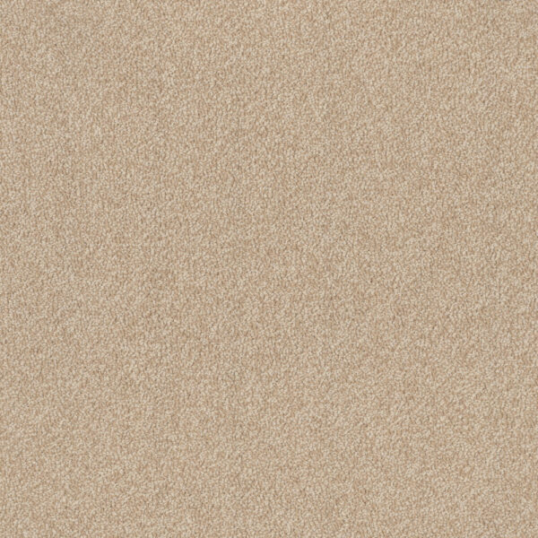 Birdwood Trevors Carpets
