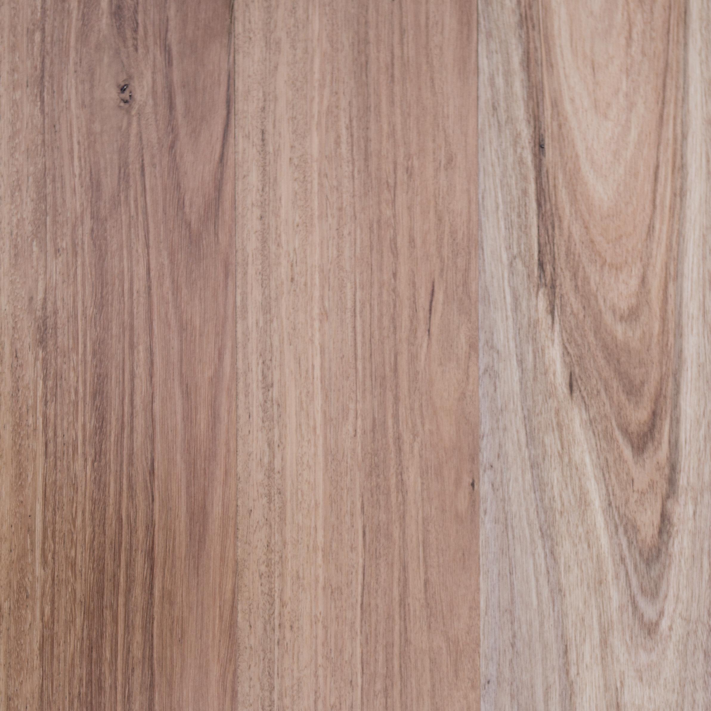 Signature Australian Blackbutt Trevors Carpets