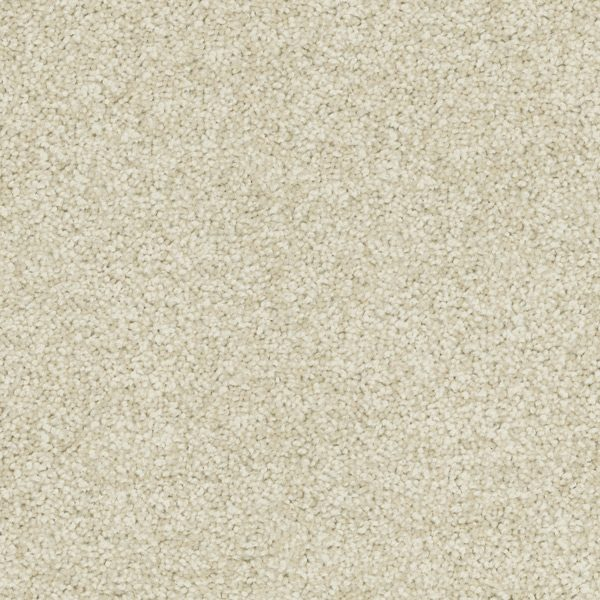 Desired Elegance Trevors Carpets