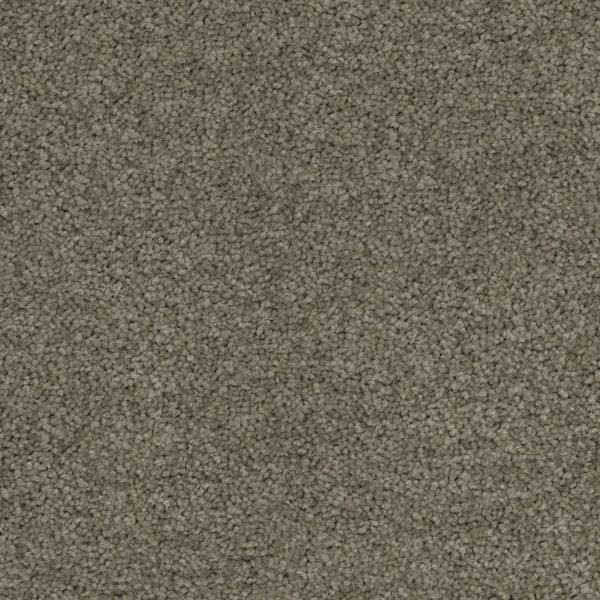 Desired Elegance Trevors Carpets