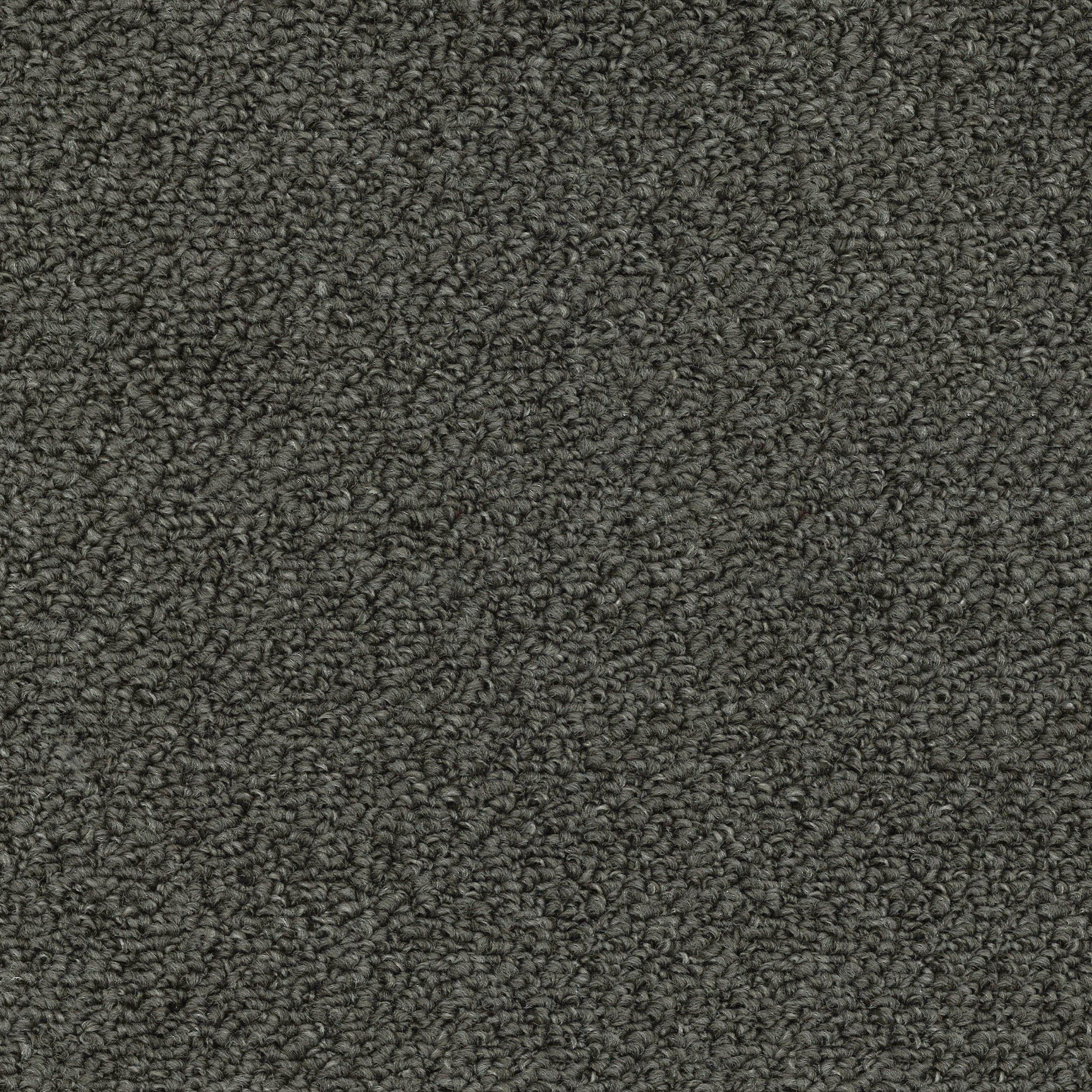Catalina Bay Trevors Carpets