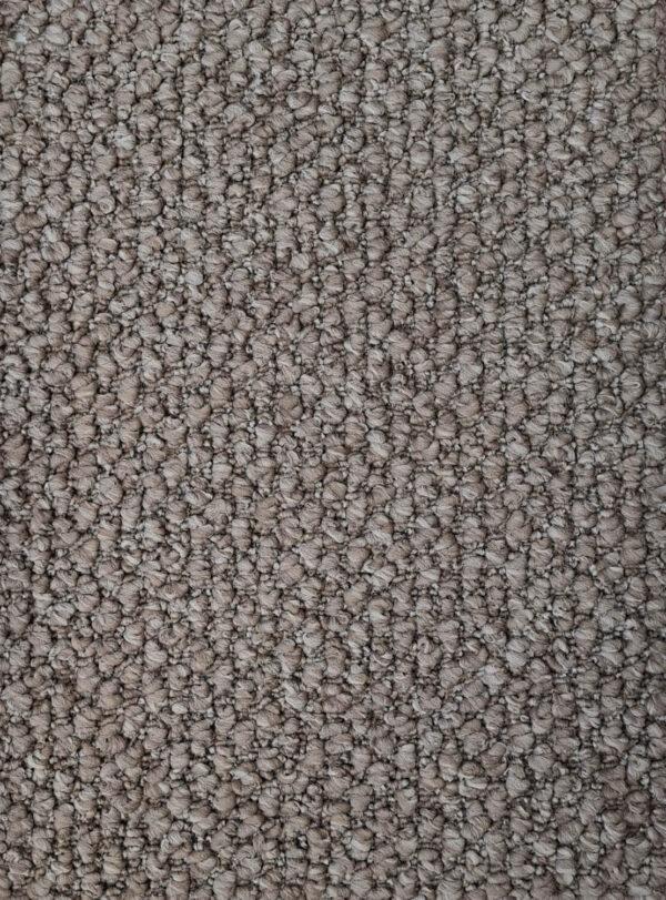 Rosaline Carpet Trevors Trevors Carpets