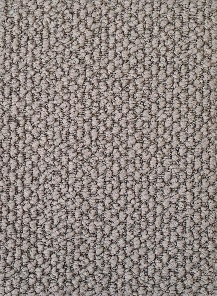 Roseline Carpet Trevors Trevors Carpets