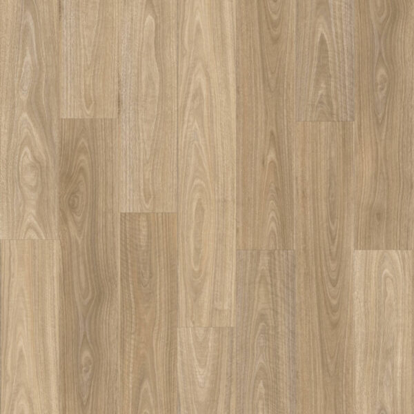 Moduleo Transform Ds Spotted Gum Trevors Carpets
